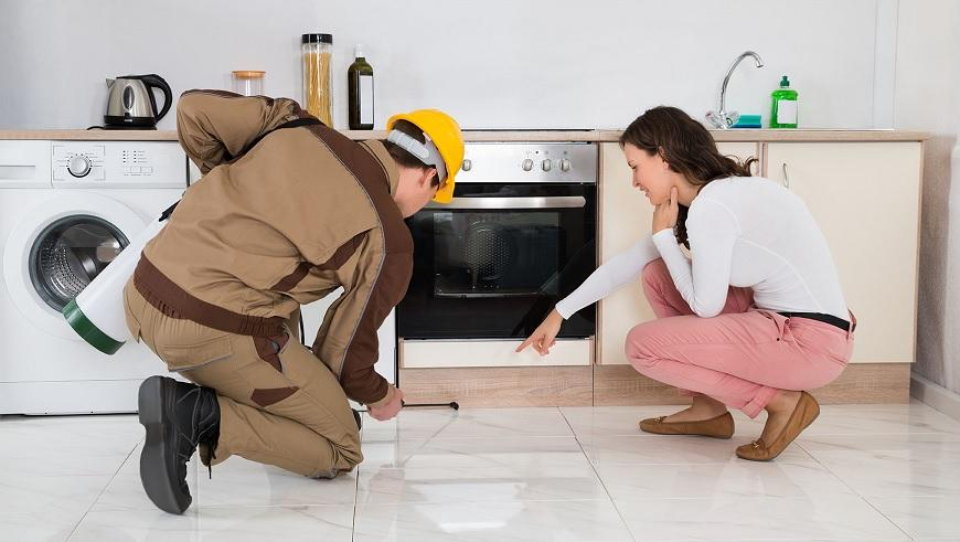 How Costly is Pest Control in London